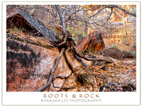 Roots and Rock