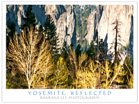 Reflections - Yosemite National Park