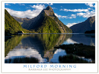 Milford Morning