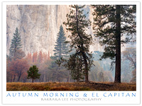 Autumn Morning and El Capitan