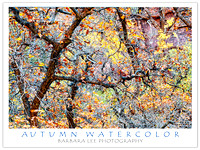 Autumn Watercolor