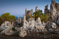Mono Lake Tufas at Dawn