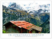 In the Shadow of the Jungfrau