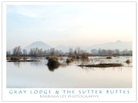 Gray Lodge and the Sutter Buttes