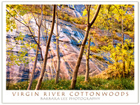 Virgin River Narrows Cottonwoods